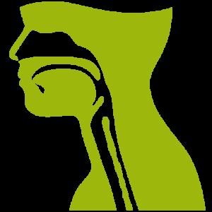 Basistekening Hoofd hals - Stichting Optimale Ondersteuning bij Kanker